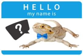 Our New Animal Ambassador Needs A Name!